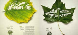 Sustainability-themed adverts