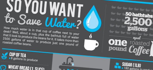 So You Want To Save Water?