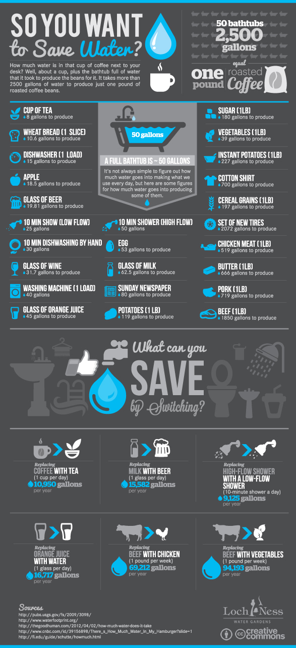 Ways to save water infographic